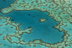 1overview-Great-Barrier-Reef-Credits-WWF