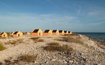 Paradijselijk Bonaire 'proeven' op Duikvaker