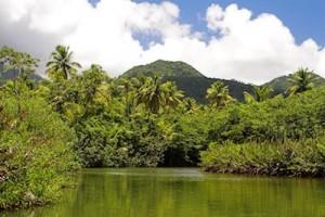 Dominica-afbeeldingen-overige_2