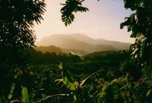 Dominica-afbeeldingen-overige_4