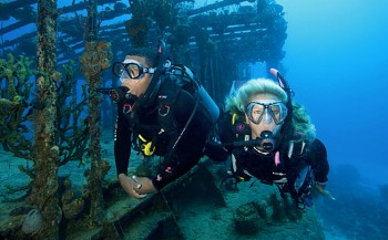 SSI Specialty - Science of Diving