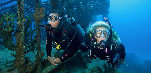 SSI Specialty – Science of Diving