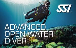 SSI_Advanced_brevet