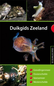duikgids_zeeland_omslag_web_72dpi