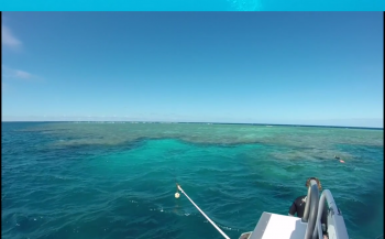 Suzy Wong - Going Pro on Agincourt Reef