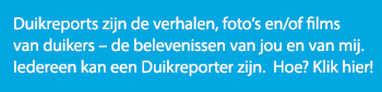 duikreport-call-to-action-350x85