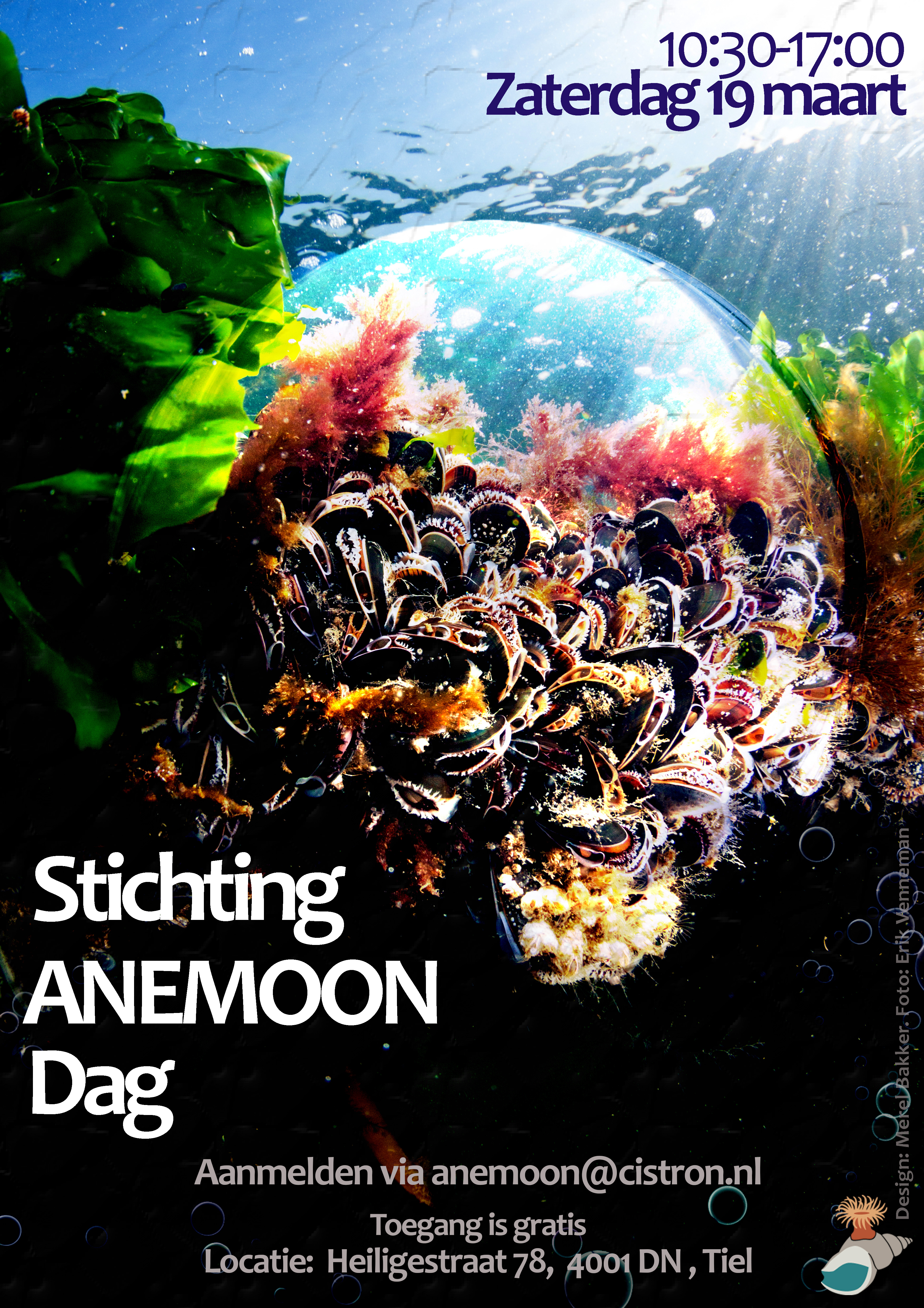Poster Stichting Anemoon dag (1)