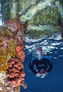 aria onder water