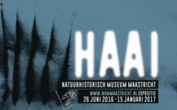 Expositie: Haai, een ijzersterk design