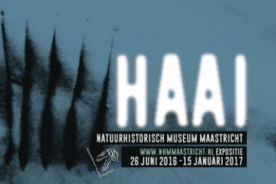 HAAI-Maastricht-