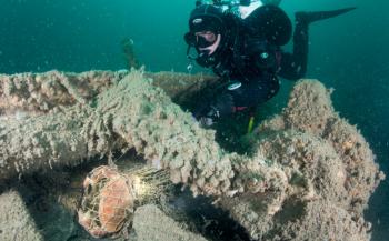 Healthy Seas op volle kracht door met schoonmaakacties in de Noordzee