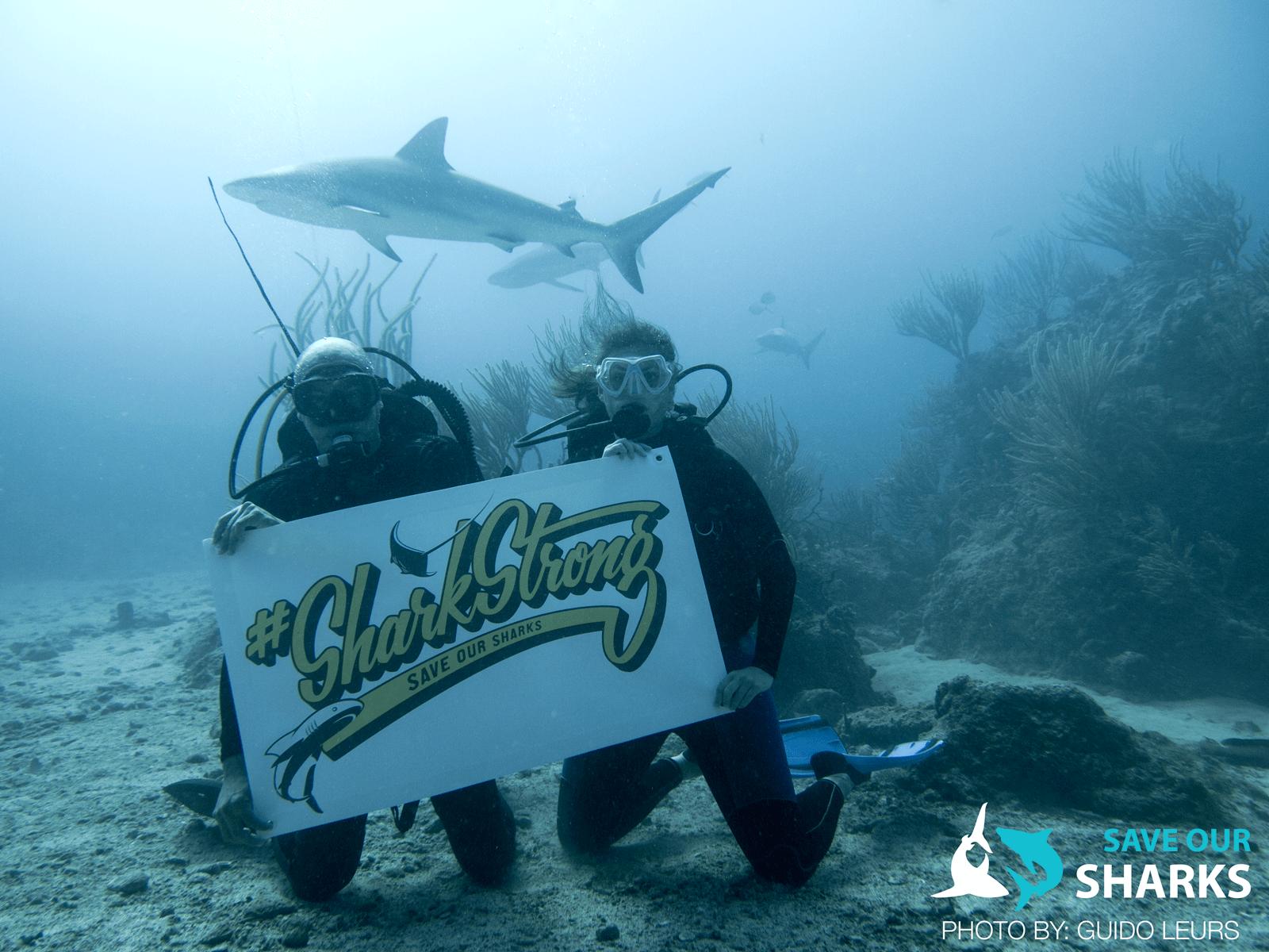 Shark Strong_Guido Leurs