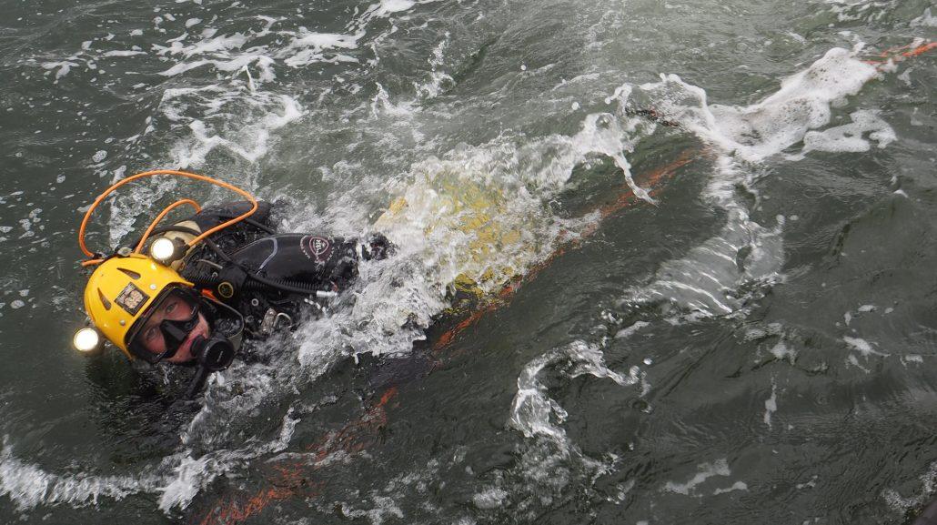 duiker Texel Marloes Otten