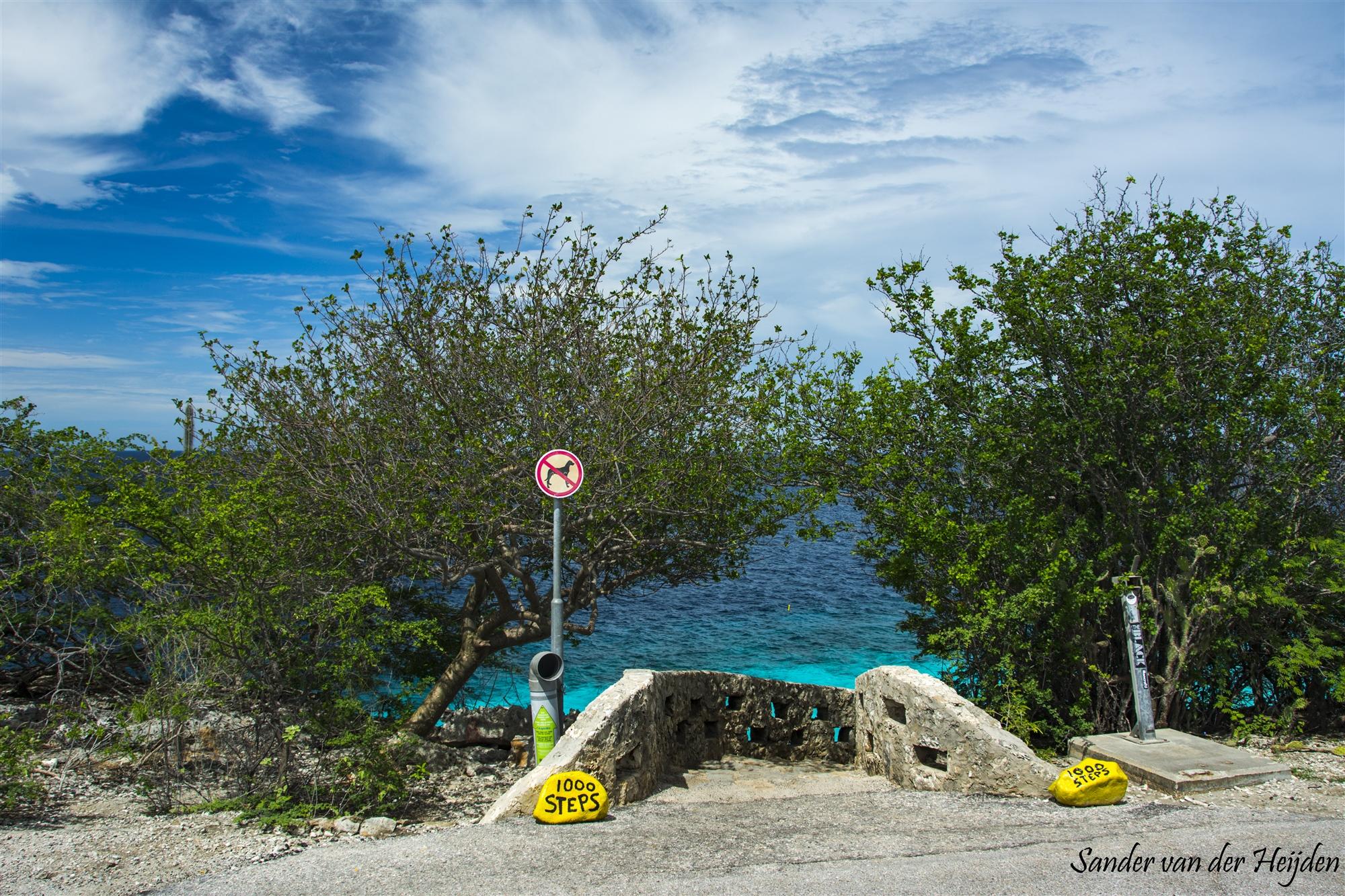 Sander van der Heijden - 1000 steps Bonaire