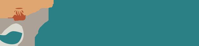 Anemoon Stichting logo RGB_website