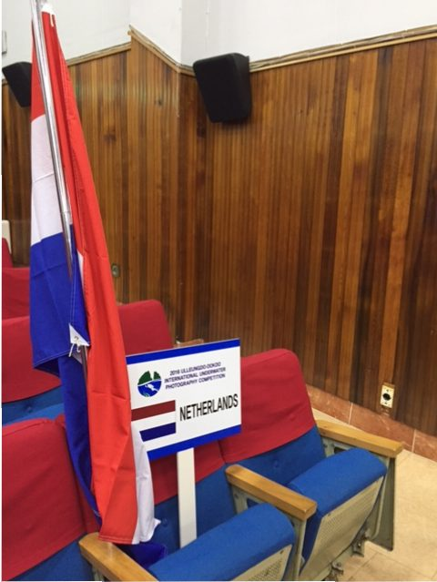 Korea_blog2_EstervandenDoel_vlag