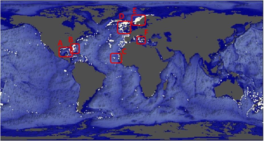Vindplaatsen van koudwaterkoraalriffen (witte stippen) gevonden. De gegevens zijn afkomstig van het United Nations Environment Programme (UNEP) (Bron: Karline Soetaert, NIOZ)