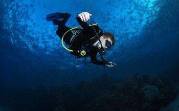 Reportagewedstrijd 2016 - Uit het dagboek van een duikertje