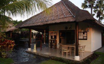 Reportagewedstrijd 2016 – Bali Photo Experience en het pygmeezeepaardje
