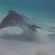 Adelaarsrog springt uit het water