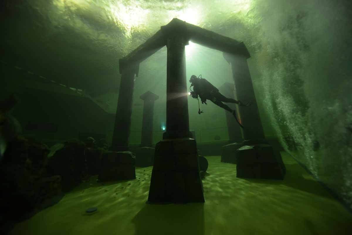 TODI - The Ultimate Dive Experience
