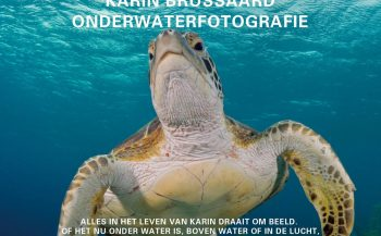 Opening expositie Faces of the Sea