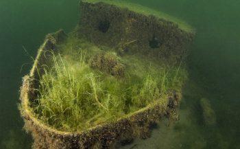 Wrakjes van de Haarlemmermeer - oud en nieuw