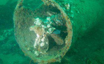 Axel Gunderson - Duiken in de groene kelder naar twee onderzeeërs