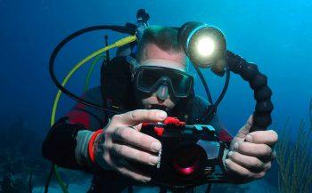Verslingerd aan onderwaterfotografie
