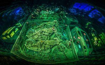 Underwater Photographer of the Year 2019: stuur je foto's in