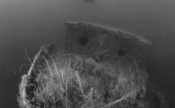 Zwart-wit in de Toolenburgerplas - Het verhaal achter de foto