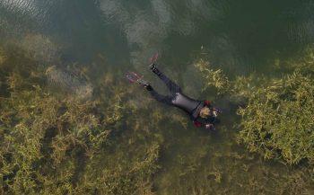 Net onder de waterspiegel met Blikonderwater
