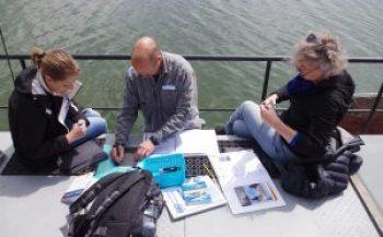 Cursus walvisobservatie op de Oosterschelde