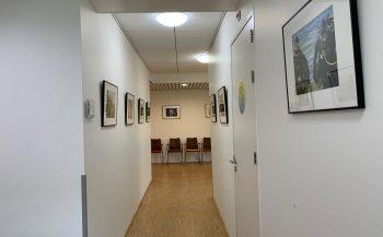 Narwal exposeert in Almere