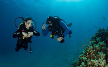 Isis Weterings - Mijn eerste duik in de Rode Zee