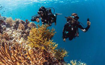 Ongekend duikcomfort met Everflex van Scubapro