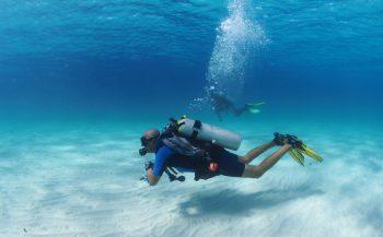 Met de Duikgids naar Bonaire