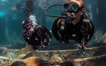 Definition duikpakken van Scubapro - optimaal duikcomfort!