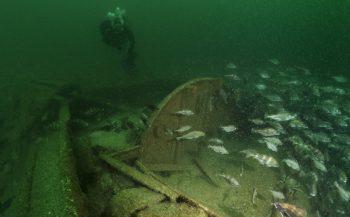 D-Day onder water