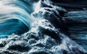 Mission Deep Blue wordt Blue Oceans