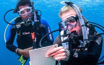 Op het droge! - Start je opleiding tot duikpro