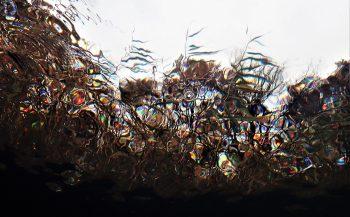 Berthold Raadsen - Caleidoscopisch effect onder water