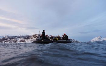 Mieke Noordanus - Bultruggen en orka's in Noorwegen