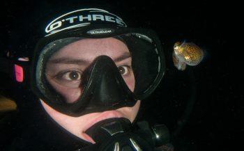 Duikvaker 2020 - Meer inktvissen zien? Dat kan!
