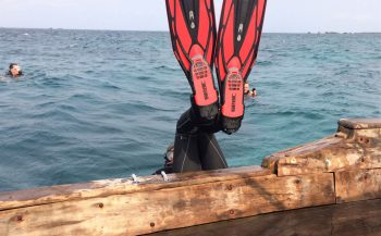 NVD: wel of niet duiken en keuren in deze tijd