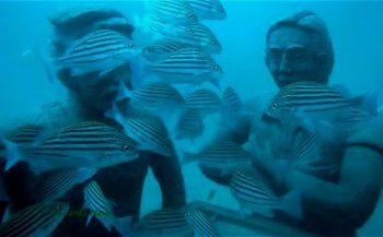 Sri Lanka heeft eigen onderwatermuseum