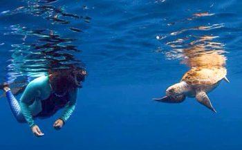 Vijf tips voor een duikvakantie in september