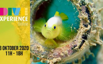 Save the date voor een nieuwe DiveXperience