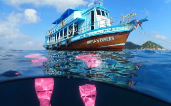 Impian Divers - Duiken in Thailand bij Nederlandse duikschool