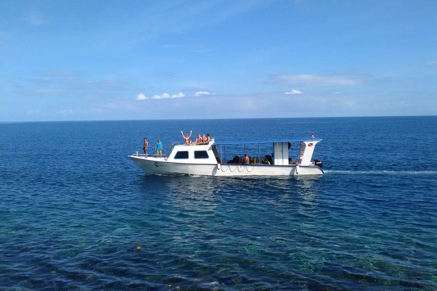 LumbaLumba-Diving-Noord-Sulawesi_Indonesie_bestemming (8)
